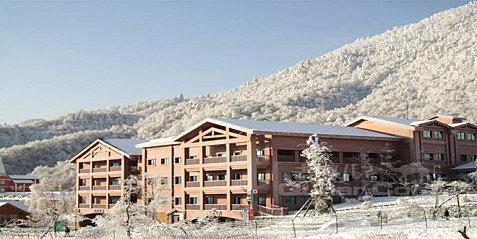 """""""滑雪场旁最好的酒店""""―西岭雪山映雪酒店"""